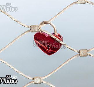 eternal love & ewige Liebe
