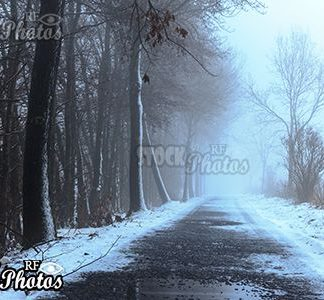 winter road and fog